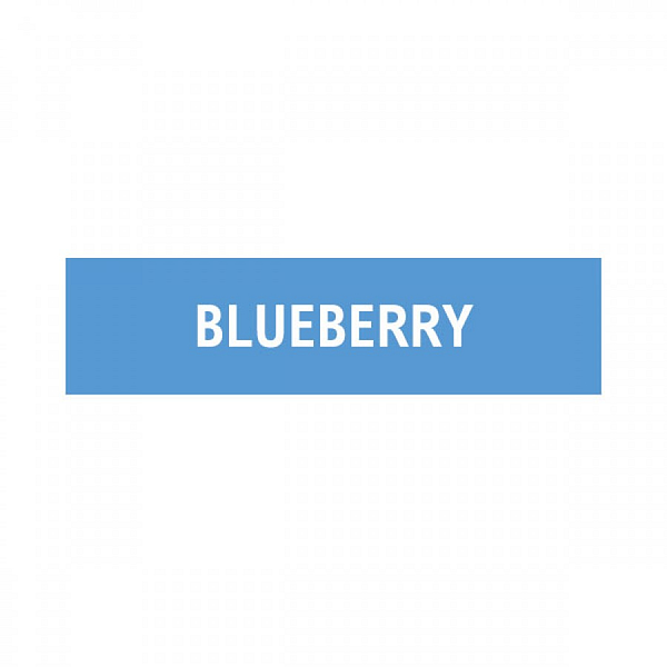 Discounted 10ml 12mg ELQD Blueberry Flavoured Eliquid