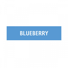 Blueberry – 6mg (10ml)