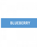 ELQD ECIGS – Blueberry – 12mg (10ml)